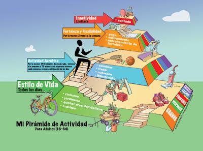 piramide actividad