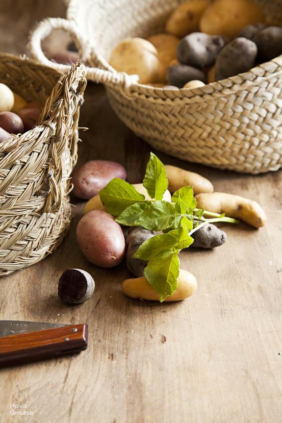 hojas de patata