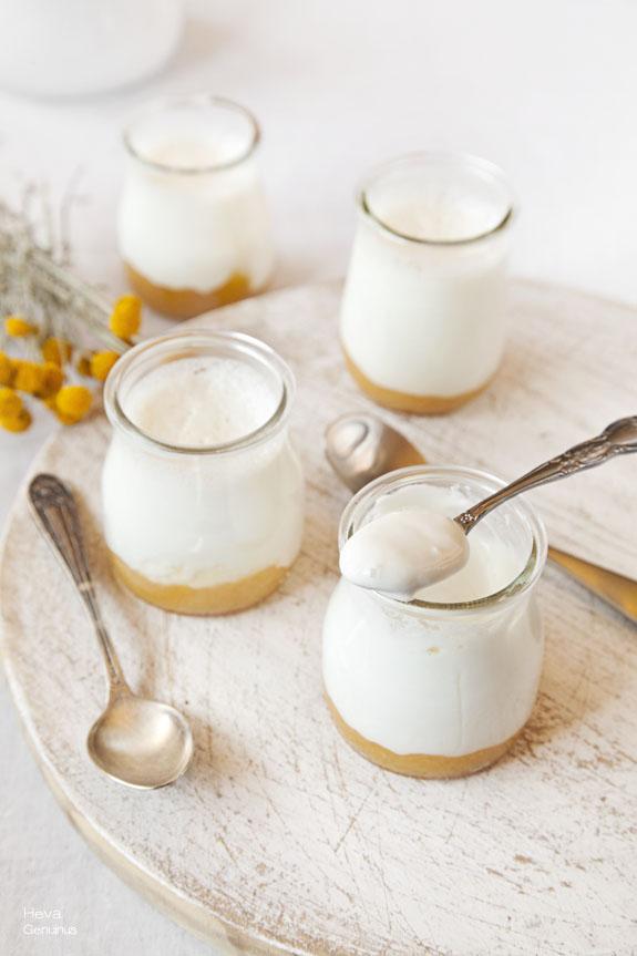 yogur casero de albaricoque